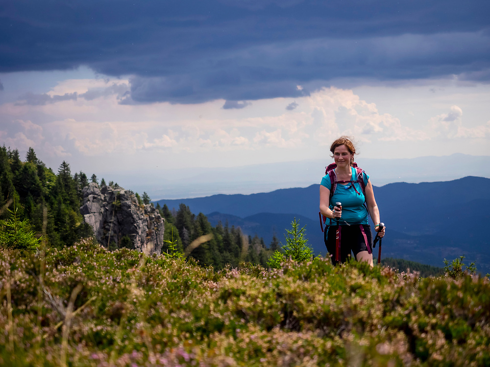 Women hiking on meadow towards valley at Col de la Schlucht In the Vosges, Alsace, France