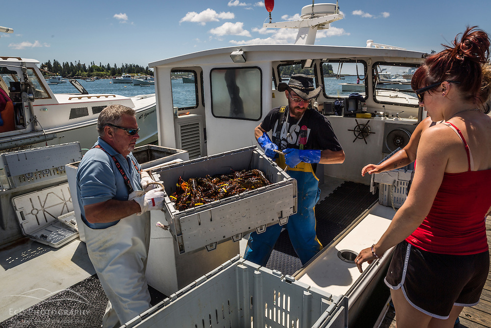 Captain Greg Carter and sternman Cody Roberts unload lobsters at the Vinalhaven Fishermen's Co-op in Vinalhaven, Maine.