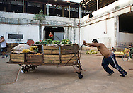 Man pushing produce cart at Mercado Agropecuario Cuatros Caminos, Havana, Cuba