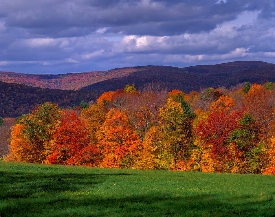 Litchfield hills with fall color & green field, near Litchfield, CT