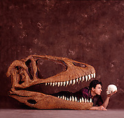 Paul Sereno, associate professor of paleontology at the U. of Chicago with reconstructed Carcharodontosaurus skull of this 90 million-year-old meat-eating dinosaur he discovered in the Sahara in Niger, Africa