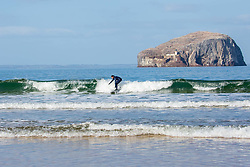 Rgular surfer, Derrick Jackson (from Port Seton) was glad of the practice<br /> <br /> The fine weather encouraged more activity today at Seacliffe Beach, near North Berwick.  Horses and surfers were all enjoying the sun on their back.