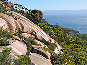 Admire Coles Bay from the Mount Amos Track, in Freycinet National Park, Tasmania, Australia. Devonian Granite is the dominant rock type at Freycinet. Orthoclase, a pink feldspar gives the mountains and coastline their characteristic pink tint. Black micas and white quartz are also found. The Tasman Sea is part of the South Pacific Ocean.