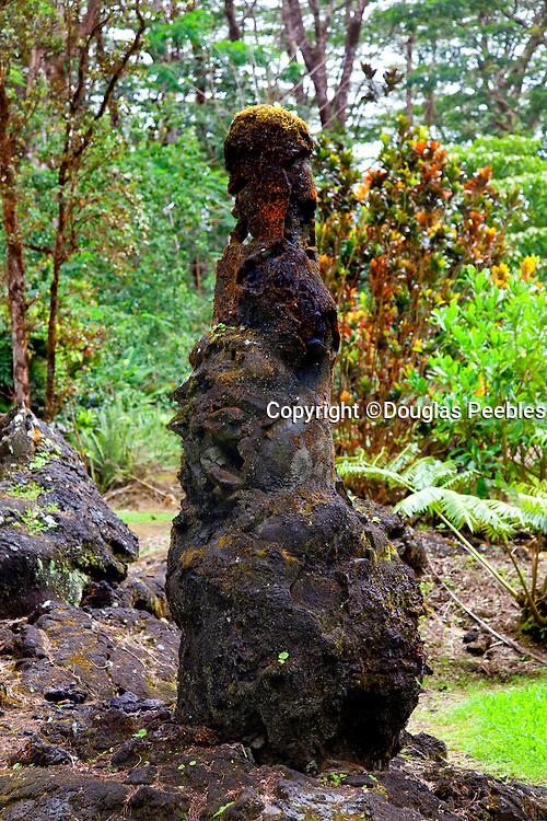 Lava encased tree, Lava Tree State Park, Puna, Island of Hawaii