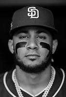 Fernando Tatis Jr. during  a MLB game between the San Diego Padres and the Baltimore Orioles at Camden Yards, MD on June 26, 2019.<br /> ( Photo/Tom DiPace)