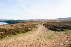 Footpath across Moorland south of Langsett Reservoir in the Peak District<br /> 07 October 2012<br /> Image © Paul David Drabble