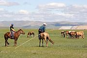 Horses and horse riding at Gun Galuut