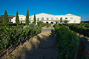 Winery Bodega Emina, ribera del Duero wine production in Valbuena de Duero, Valladolid,  Spain