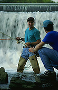 Outdoor recreation, Fishing Men Trout Fish in Yellow Breeches Creek, Cumberland Co. PA