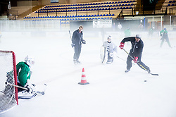 Robert Kristan and Tomaz Razinger during practice session of Hockey Academy of Anze Kopitar and Tomaz Razingar, on July 6, 2017 in Ice Hockey arena Bled, Slovenia. Photo by Vid Ponikvar / Sportida