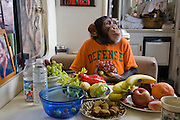 Ricki the chimp with his typical day's worth of food at the Bailiwick Ranch and Discovery Zoo, in Catskill, New York. (Ricki the chimp is featured in the book What I Eat: Around the World in 80 Diets.) His owners, Pam Rosaire-Zoppe and Roger Zoppe say that he likes fresh fruits and vegetables, and an occasional yogurt drink, far more than packaged monkey chow. (MODEL RELEASED).