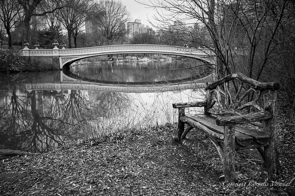 A rustic bench at Bow Bridge on a rainy day in Central Park