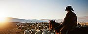 Shepherd and sheep, Olkhon Island, Siberia, Russia