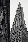 Transamerica Pyramid Center, San Francisco