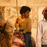 Israel, Jerusalem, Palestinian man wearing kaffiya offers camel rides outside walled city at sunset on spring evening