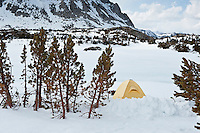 Yellow tent in winter mountains campsite, Sierra Nevada mountains, California, USA