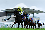 ,- Mandatory by-line: Ryan Hiscott/JMP - 24/08/20 - HORSE RACING - Bath Racecourse - Bath, England - Bath Races