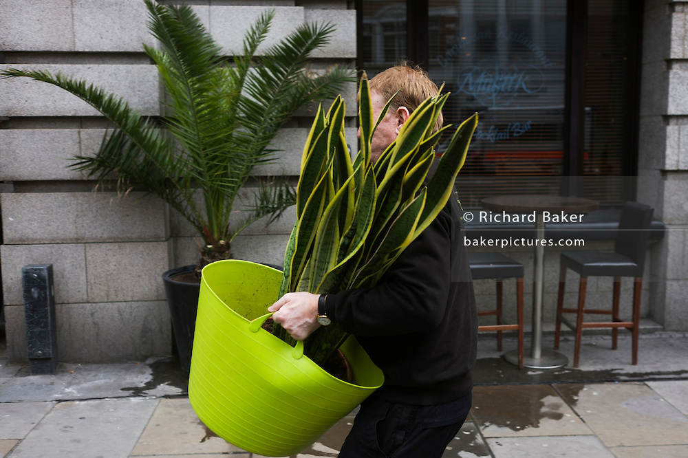 A man from funkyyukka.co.uk delivers a potted plant to a London restaurant and bar.