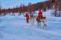 Mongolie, province de Khovsgol, les Tsaatans, éleveurs des rennes, transhumance hivernale, traversée d'une rivièere gelée // Mongolia, Khovsgol privince, the Tsaatan, reindeer herder, winter migration, crossing a frozen river