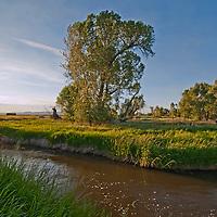 Hyalite Creek flows through Montana's Gallatin Valley, near Belgrade & Bozeman.