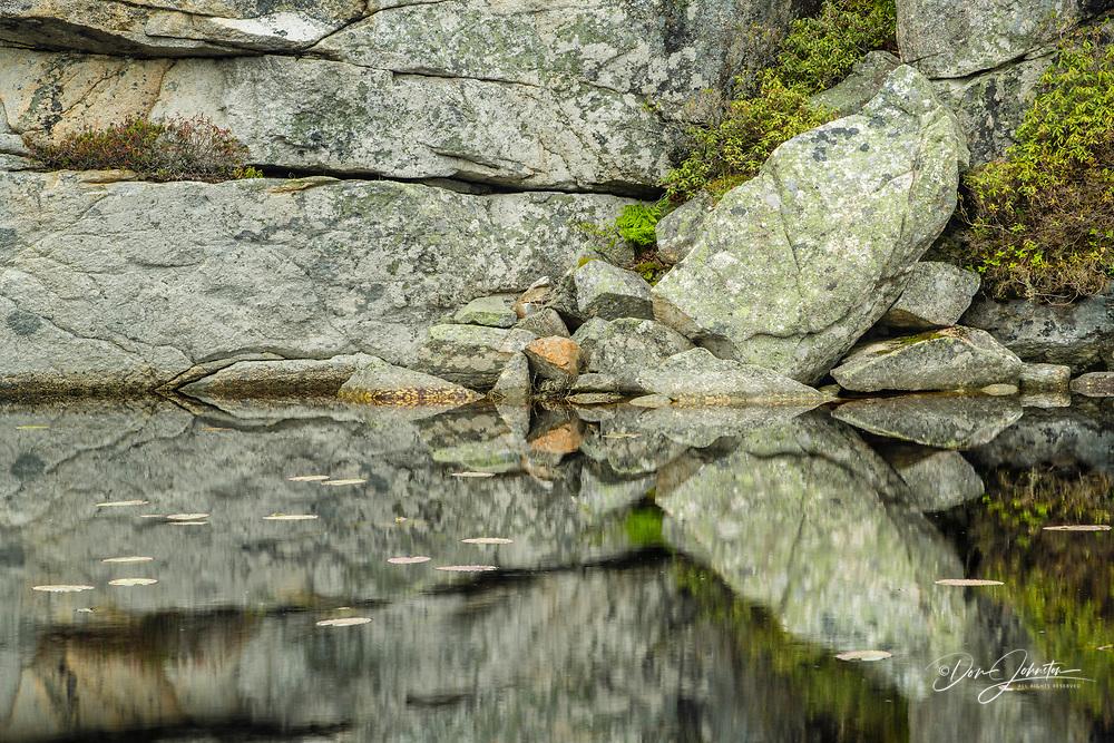 Rock outcrops reflected in small boreal pond, Rose Blanche, Newfoundland and Labrador NL, Canada