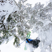 Owen Dudley backflips under one of the many trees of the Cascade Mountains.