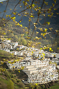 View of town seen through branches, Trevelez, Andalusia, Spain