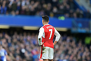 Alexis Sanchez of Arsenal looks on.  Premier league match, Chelsea v Arsenal at Stamford Bridge in London on Saturday 4th February 2017.<br /> pic by John Patrick Fletcher, Andrew Orchard sports photography.