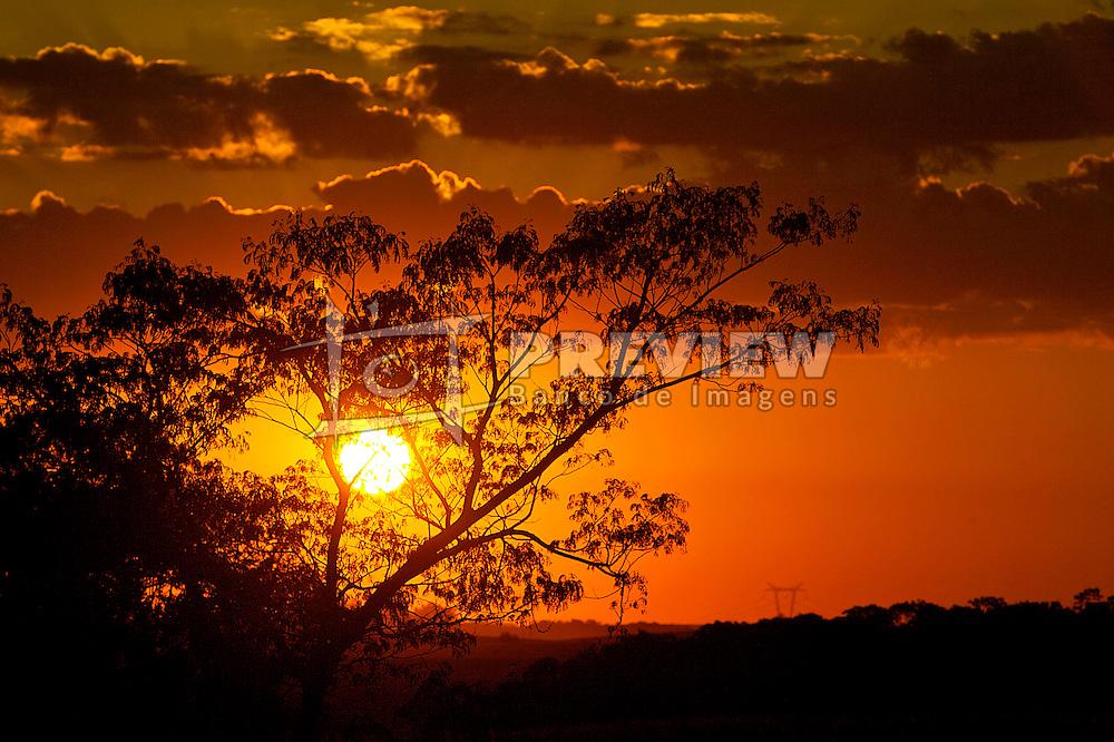 Árvore ao por-do-solFOTO: Jefferson Bernardes/Preview.com
