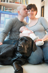 Family with baby boy and dog