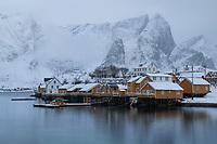 Yellow rorbu cabins of Sakrisøy in winter landscape, Moskenesøy, Lofoten Islands, Norway