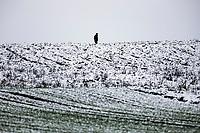 Podlasie, 30.11.2020. Pierwsze wieksze opady sniegu na Podlasiu tej zimy N/z czlowiek idacy przez zasniezone pole fot Michal Kosc / AGENCJA WSCHOD