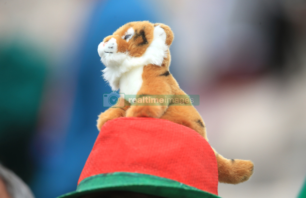 A Bangladesh fan wears a Tiger hat during the ICC Cricket World Cup group stage match at The Hampshire Bowl, Southampton.