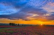 Clover Fields, Corlinius, OR.
