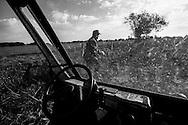 Cattle farmer Doug Black works on his ranch, Broken B Ranch, in Edgar Springs, Missouri. The U.S. Census Bureau named Edgar Springs the population center of the United States.