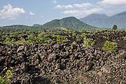 A sea of dried lava rock in the remote village of San Juan Parangaricutiro, Michoacan, Mexico. This area was covered in an eight-year eruption of the Paricutin volcano which consumed two villages in 1943 and covered the region in lava and ash.