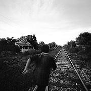 becal, campeche<br /> niño corriendo en vias de tren
