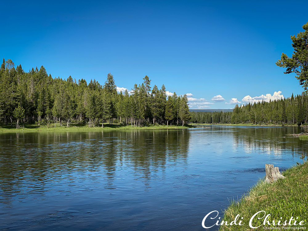 The Henry's Fork of the Snake River passes Upper Coffeepot campground in the Caribou-Targhee National Forest on Thursday, June 3, 2021, in Island Park, Idaho.  (© 2021 Cindi Christie/Cyanpixel)