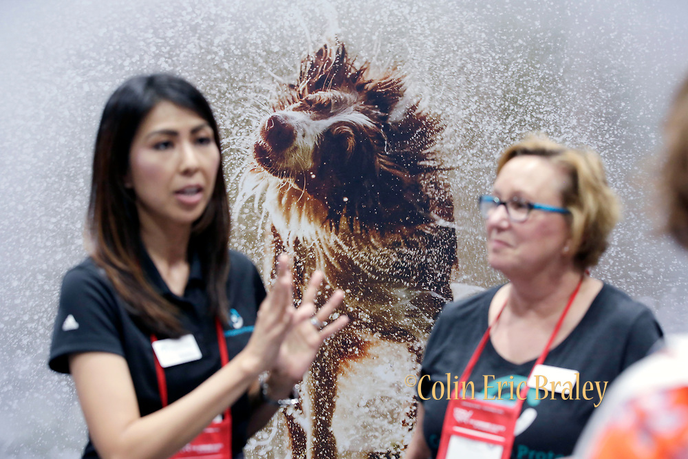 KC Corporate Event Marketing Photographer- Convention goers take part in the Animal Care Expo 2018 at the Kansas City Convention Center, in Kansas City, Mo., Monday, May 14, 2018. (Colin E. Braley)