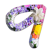 The number Nine Part of a set of letters, Numbers and symbols of 3D Alphabet made with colourful floral images on white background