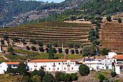 vineyards hilltop village near assento view from winery quinta da gaivosa douro portugal