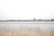 View through grasses across the River Severn at Arlingham in Gloucestershire, United Kingdom.