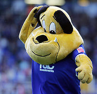 Birmingham City FC vs Preston North End FC Championship 25/04/2009<br /> Photo Nicky Hayes/Fotosports International<br /> The Birmingham mascot scratches his head as his team slump to defeat.