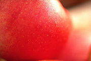 Close up selective focus photograph of a couple of misc. apples
