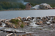Lumber mill and drying kilns near Lago Escondido, near the Port of Ushuaia, southernmost city in the world. Tierra del Fuego, Argentina.