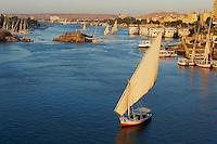 Egypte, Haute Egypte, vallée du Nil, Assouan, felouques sur le Nil // Egypt, Nile valley, Aswan, Feluccas on the Nile River