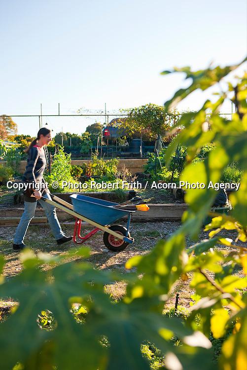 Leederville Community Garden