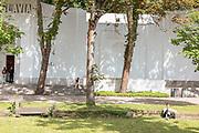 Venice, Biennale Architettura: