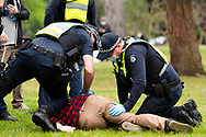 A man is seen being tackled and detained after failing to provide his details during the Freedom protest on October 23, 2020 in Melbourne, Australia. Freedom protests are being held in Melbourne in response to the governments COVID-19 restrictions and continuing removal of liberties despite new cases being on the decline. Victoria recorded a further 1 new cases overnight along with no deaths recorded.(Photo by Mikko Robles/Speed Media)