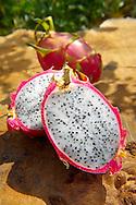 Fresh Dragon Fruit (Hylocereus undatus).